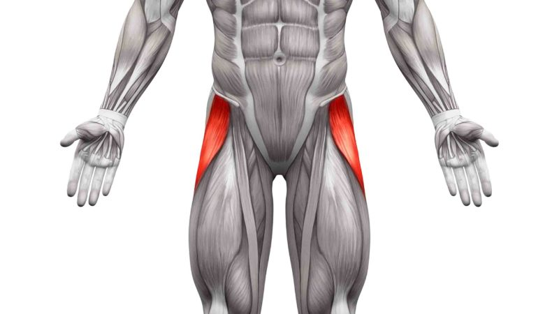 太もも外側【大腿筋膜張筋】