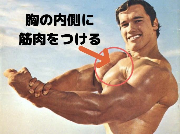 大胸筋の内側に筋肉をつける効果的な鍛え方を解説 つかない方の間違いも紹介