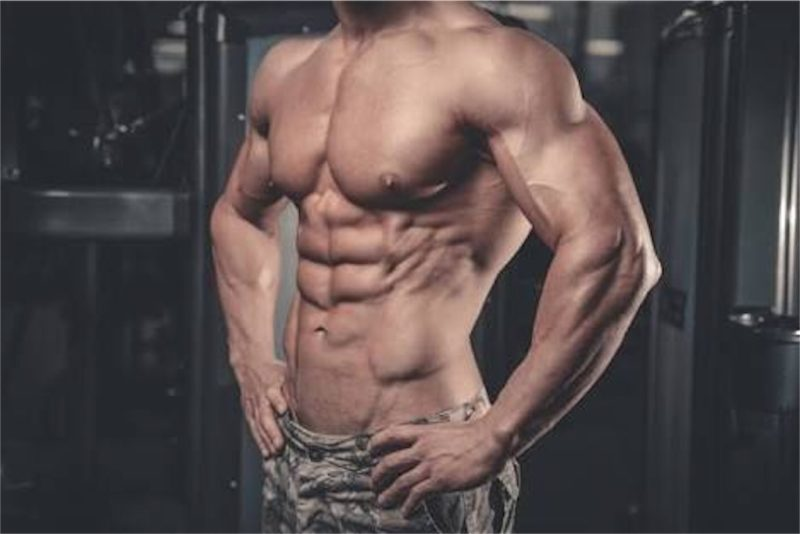 スクワットしていれば腹筋は鍛えられる?