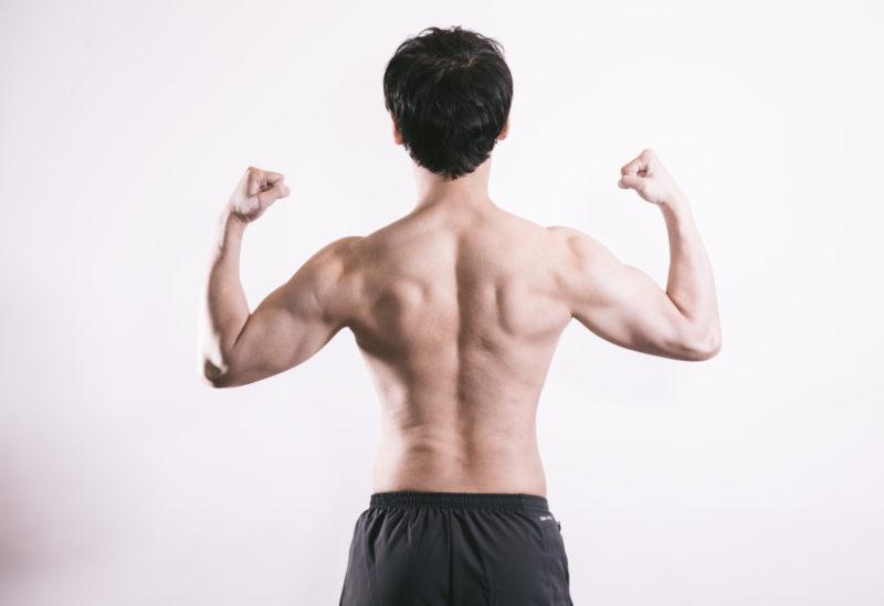 筋肉率の正しい計測方法について
